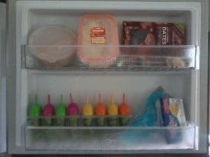 Flashing my Paleo freezer door.